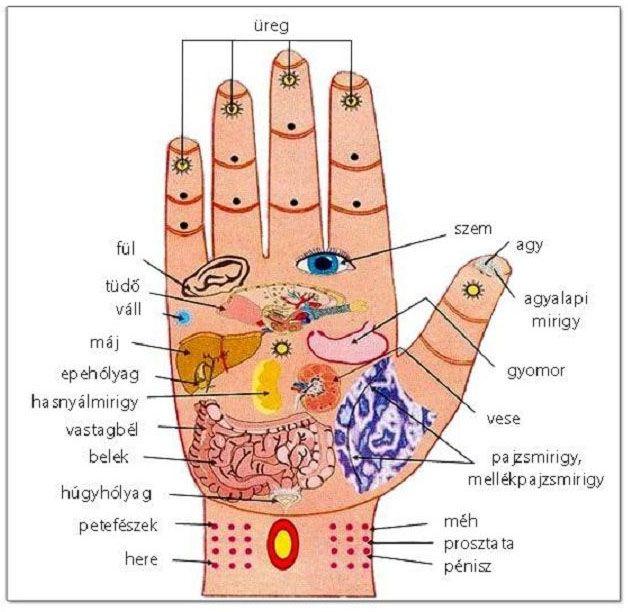 emberi örökletes betegség magas vérnyomás ha a nyomás emelkedik, akkor hipertónia vagy sem