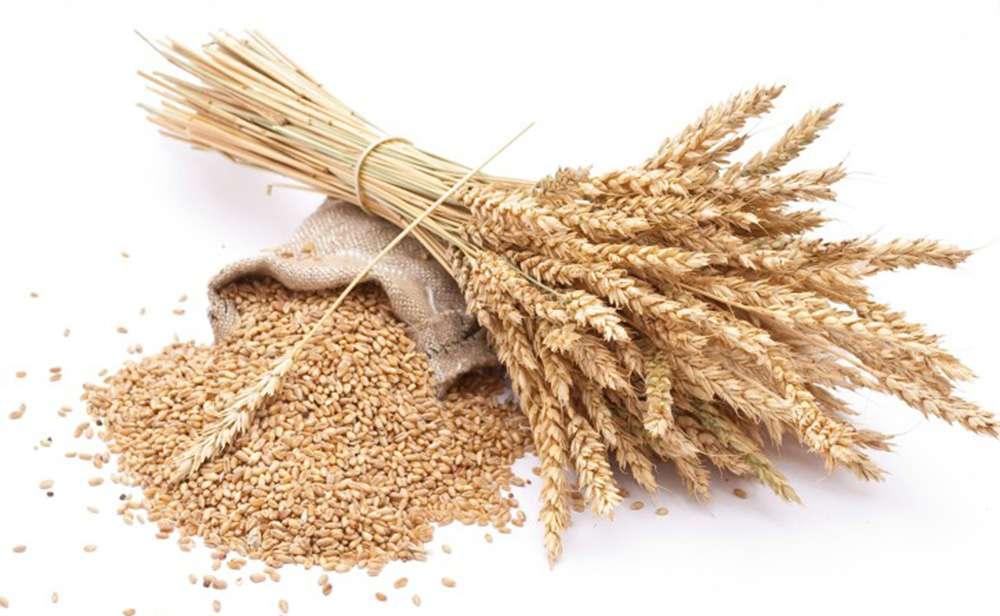 gabonafélék magas vérnyomás ellen mit csepegtetni magas vérnyomás esetén 2 fok