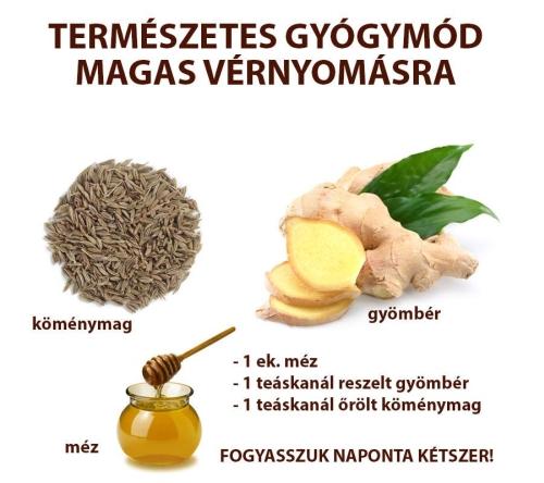 természetes gyógyszerek magas vérnyomás ellen a magas vérnyomás véredényeinek kezelése