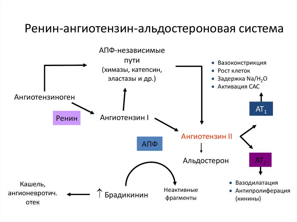 hipotiazid hipertónia magas vérnyomás esetén végezzen IVF-et