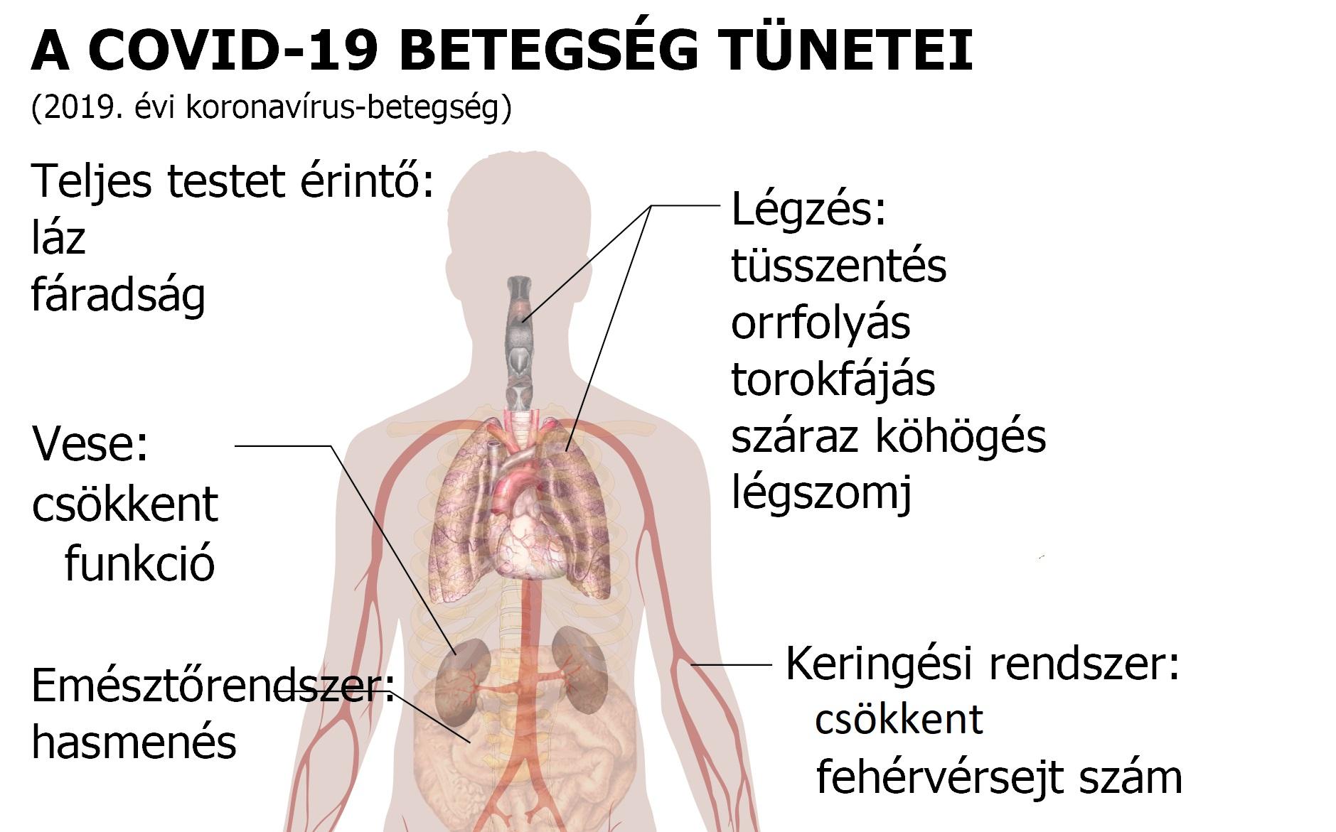 lehet-e magas vérnyomás a hepatitis miatt gyógyszerek az érgörcs enyhítésére magas vérnyomásban