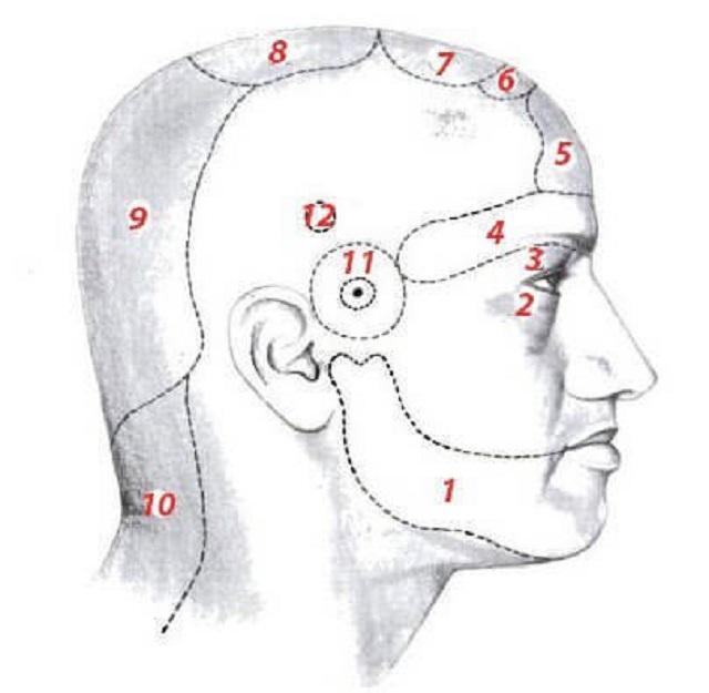 magas vérnyomással, ahol a fej fáj az ecg dekódolása magas vérnyomás esetén