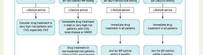 magas vérnyomás 2 fokozat 3 kockázat 2 dep mi csökkenti a vérnyomás hipertóniáját