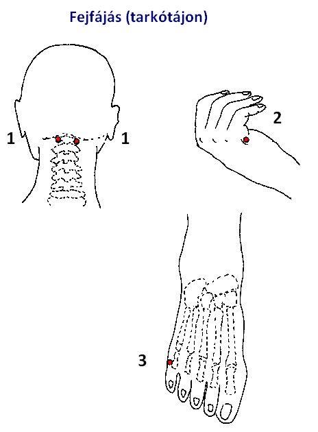 az akupunktúra hasznos magas vérnyomás esetén borostyánkősav alkalmazása magas vérnyomás esetén