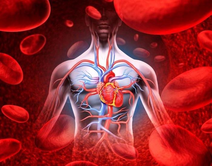korai magas vérnyomás A magas vérnyomás Cahors-kezelése
