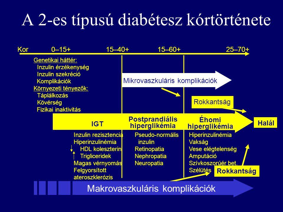 a 2-es típusú cukorbetegség és a magas vérnyomás kórtörténete a magas vérnyomás kezelése