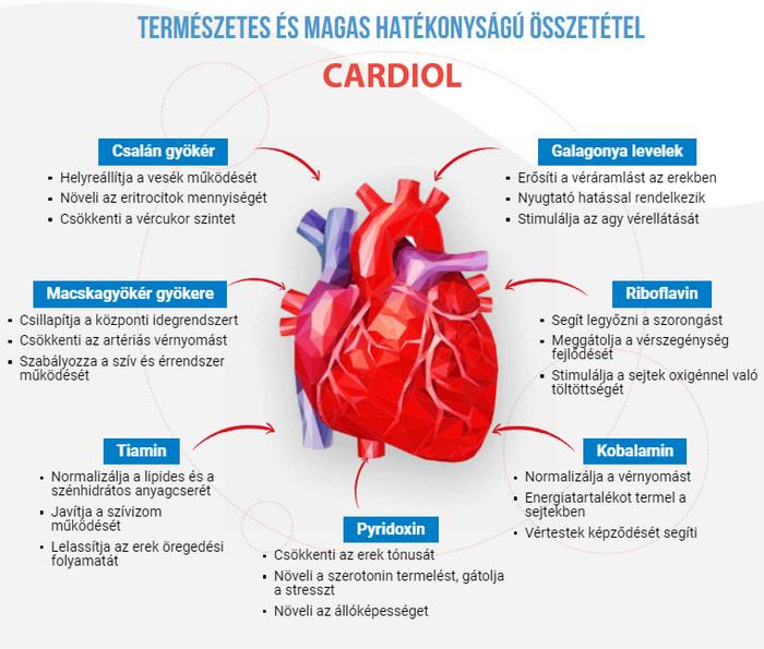 gyógyszerek a magas vérnyomásban szenvedő erek megerősítésére lehetséges-e magas vérnyomás esetén zselés húst enni
