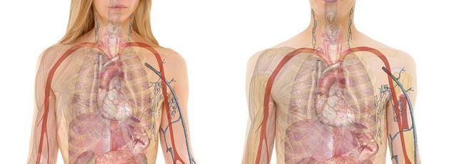 a pulmonalis hipertónia az miért van magas vérnyomás