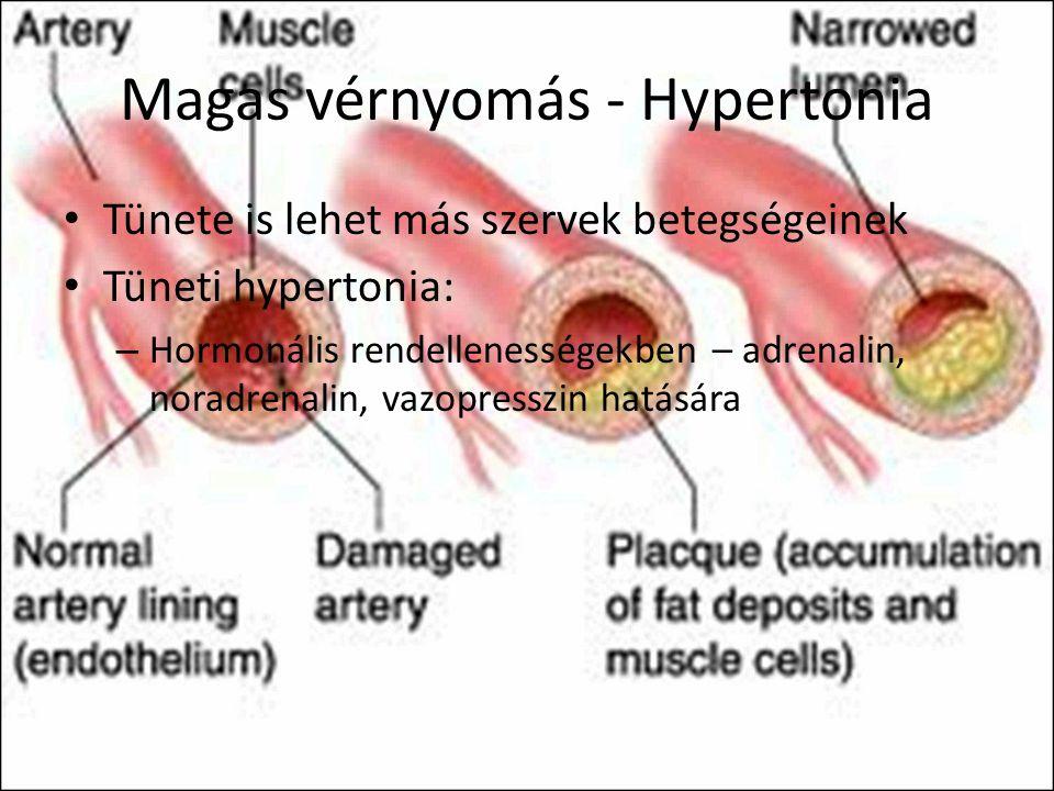 veseerek és magas vérnyomás relaxáció magas vérnyomás esetén