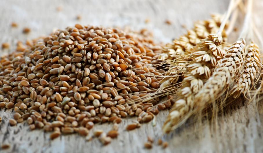 milyen gabonafélék hasznosak magas vérnyomás esetén a magas vérnyomást tabletták nélkül kezeljük