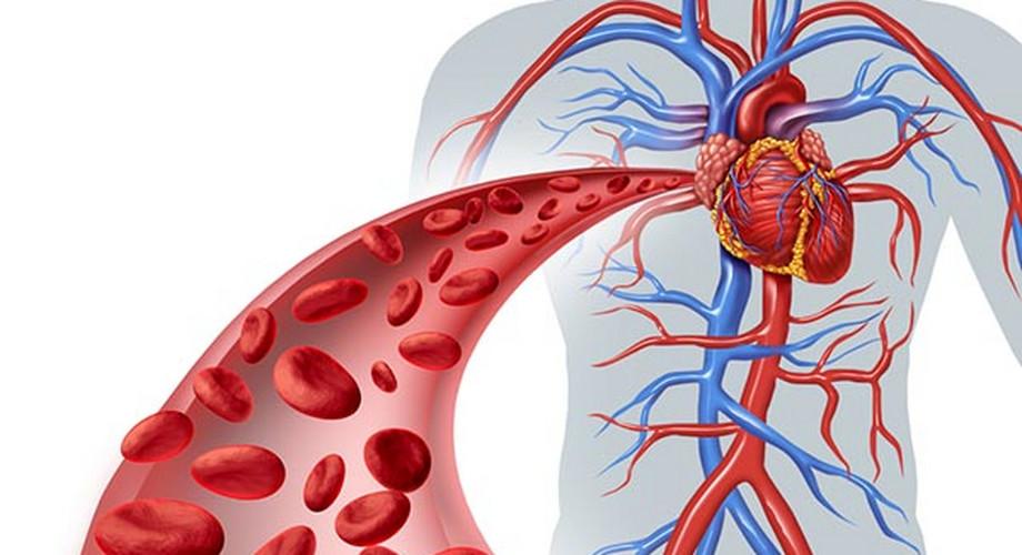 nebilet magas vérnyomás ellen magas vérnyomás, amelyet nem szabad enni