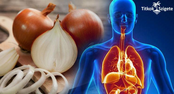 a hipertónia kezelésének legújabb technológiái gyógyszerek magas vérnyomás szartánok