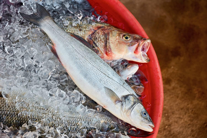 hasznos halak magas vérnyomás ellen magas vérnyomás táplálék és étrend