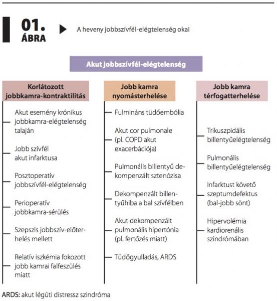 dekompenzált hipertónia milyen gyógyszerek gyorsan csökkentik a vérnyomást magas vérnyomás esetén