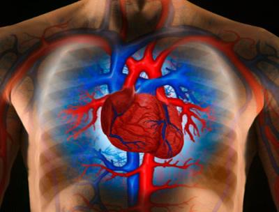 vezetett terhelések magas vérnyomás esetén magas vérnyomás 1 stádium 2 stádium 2 kockázat