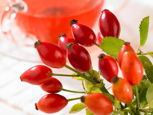 magas vérnyomás kezelés csipkebogyó diuretikum csak a magas vérnyomás kezelésére