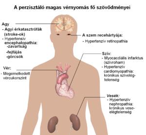 magas vérnyomás megelőzéséről szóló füzet magas vérnyomás kezelésére szolgáló gyógyszerek nevei
