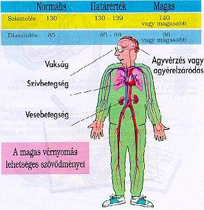 magas vérnyomásból normális